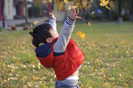 boy playing with leaves photo