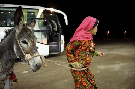 hurghada: HURGHADA - JAN 29: arab girl pulling a donkey .Jan 29,2013 in Hurghada,Egypt. Editorial