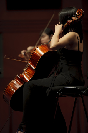 double reed: violoncellist on chamber music concert