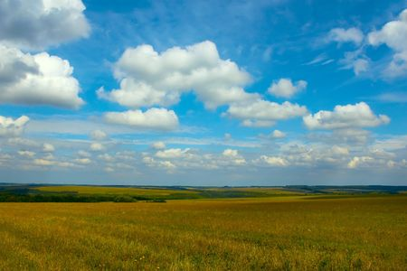 Autumn rural landscape. White clouds hang over the field with stubble Stock Photo - 7787608