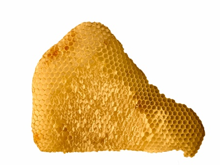 Honeycomb with honey isolated on a white background photo