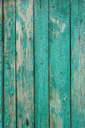 Fragment the shield of parallel vertical old wooden boards painted in green