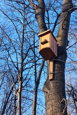 Bird house hanging on the trunk of a tree. Beginning of winter
