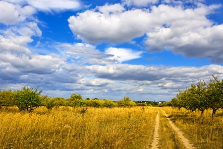 Rural late summer landscape. Dirt road among trees and meadows Stock Photo