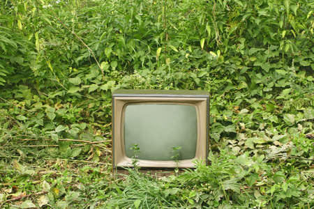 Old outmoded TV set in an environment of various green plants. Ecology concept Stock Photo