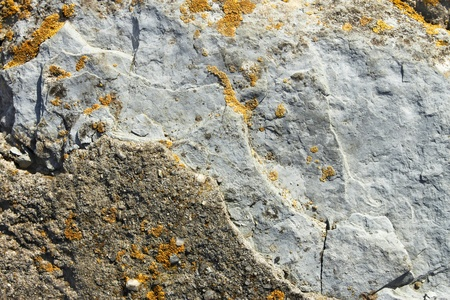 Fragment of stone boulders partially covered with tiny yellow lichens. Close-up Stock Photo - 12955658