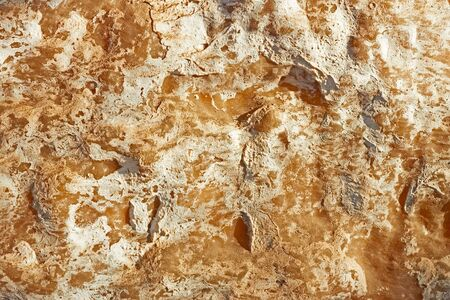 calcareous: Surface of a light brown stone with calcareous layers