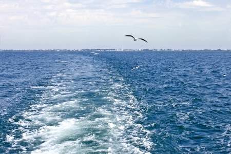 astern: Waves astern a boat which moves away from the shore. Seagulls are flying follow
