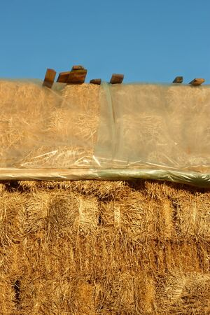 polyethylene film: Big pile of straw covered with polyethylene film from above