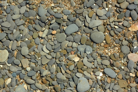Fragment of pebble beach with flat colored pebbles, small stones and shells detail close-up in bright sunlight Stock Photo - 21132446