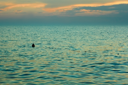 sways: Yellow-orange clouds reflected in sea surface after sunset. Float the bounding coastal sways on the waves Stock Photo