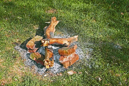 negligence: Remains of a bonfire on the green grass as an example of environmental negligence