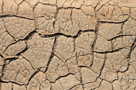 Many cracks in the dried soil in arid season as a texture