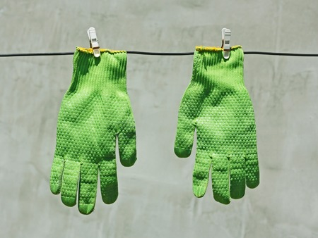 vividly: Two vividly green gloves hanging on a wire on a background of gray wall in bright sunlight Stock Photo