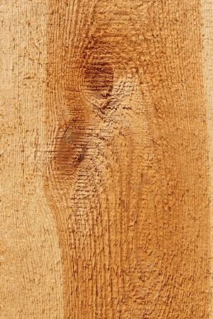 longitudinal: Detailed coarse macrostructure of longitudinal section of wooden board with annual rings