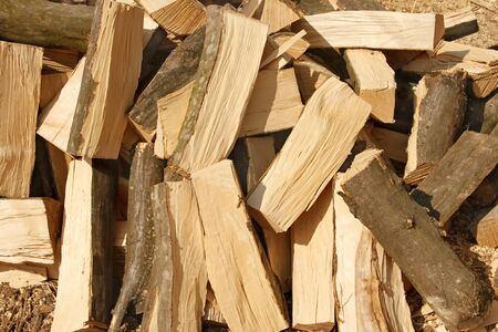 hornbeam: Big pile of chopped firewood hornbeam in bright sunlight, close-up