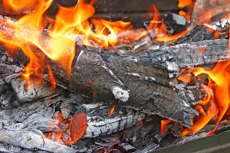 smoldering: Burning firewood with ashes and flames close-up
