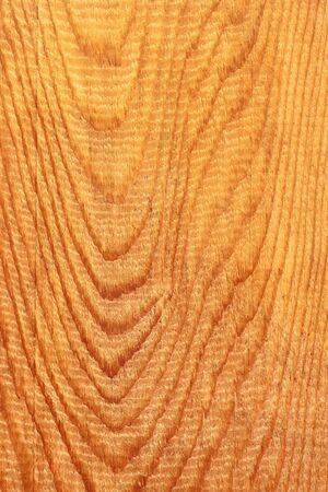 longitudinal: Detailed coarse structure of longitudinal section of wooden board with annual rings