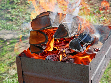 blazes: Firewood burning in a metal tray for broiling pan in a fine sunny weather against green grass