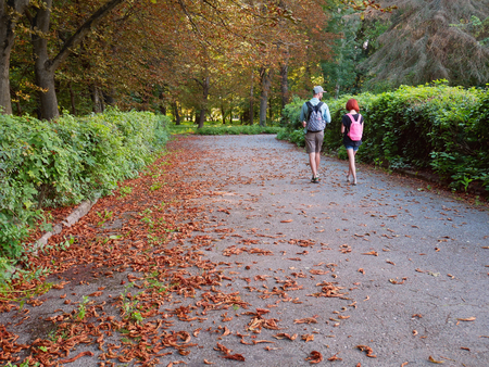 Man and woman with backpacks are walking the park alleys under chestnuts in the late summer