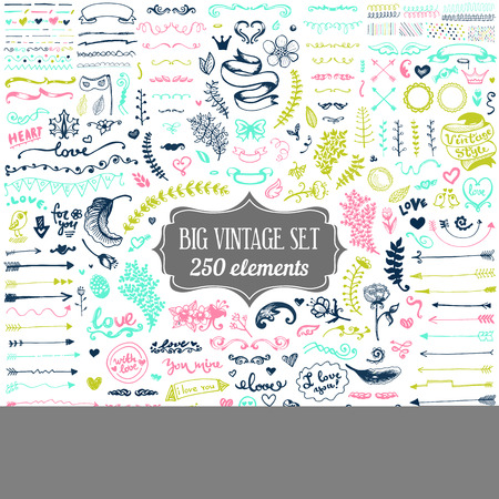 Big set of vintage elements. Vector decoration collection. Hand drawn flowers and leaves, arrows and page decor. Stock Illustratie