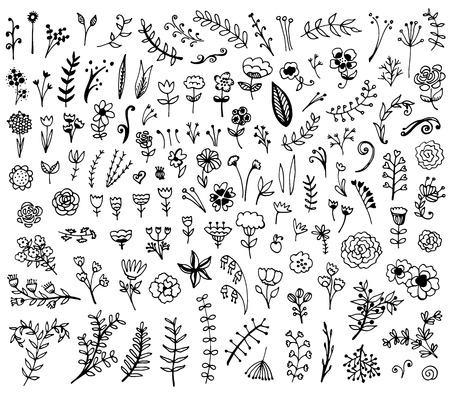 leaf line: Floral hand drawn vintage set. Vector flowers and leaves collection. Sketch art illustration.