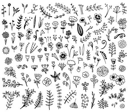 Floral hand drawn vintage set. Vector flowers and leaves collection. Sketch art illustration.