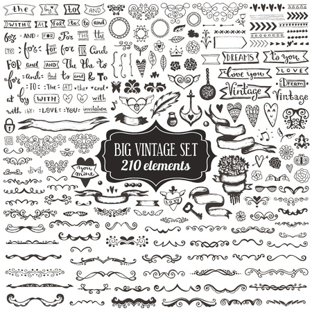 Big set of vintage elements. Vector decoration collection. Hand drawn flowers and leaves, ribbons and page decor.