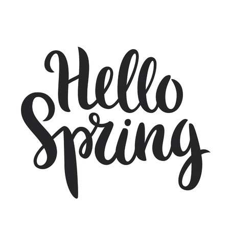 Hello Spring phrase vector lettering. Hand drawn calligraphy, isolated in white background.