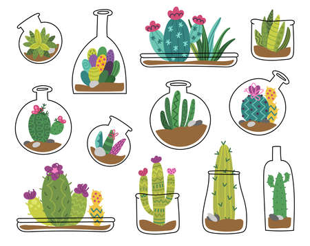 Cute cactus and succulent