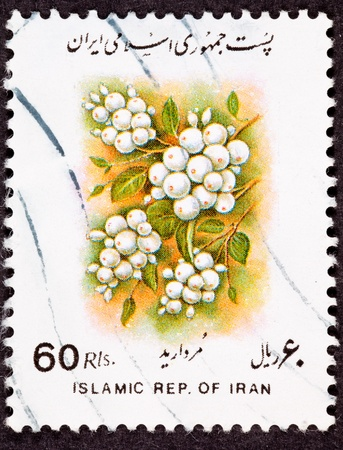 canceled: Canceled Iranian Postage Stamp Bunches of White Berries on Bush Sorbus glabrescens White-fruited Rowan Stock Photo