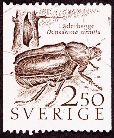 Cancelado el sello sueco mostrando un ermitaño Beetle/Osmoderma Eremita/L?derbaggen junto a un árbol hueco.  El escarabajo normalmente se encuentra dentro de árboles huecos. Foto de archivo - 9003723