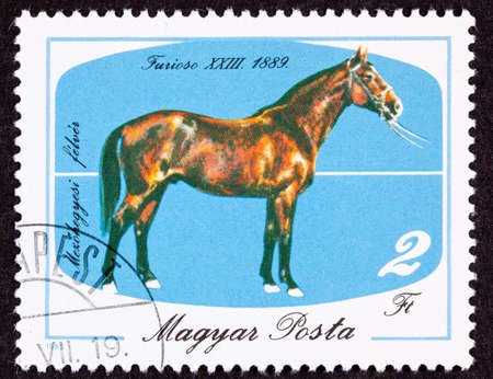 Canceled Hungary Postage Stamp commemorating the Hungarian Furioso horse breed, Isolated Background Imagens
