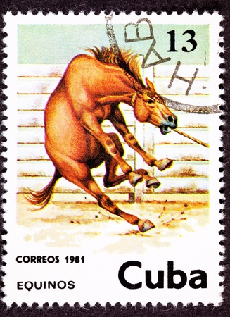 canceled: Canceled Cuban Postage Stamp Wild Horse Leaping Corral Lasso Neck