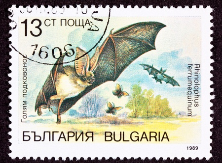 echolocation: Bulgarian Postage Stamp Horseshoe Bat Rhinolophus Ferrumequinum.  The Horseshoe Bat has a horseshoe shaped bump on its head that emits echolocation calls used in navigation and hunting.    Horseshoe bats may also carry the SARS virus, so watch out!