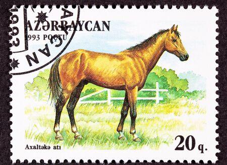 Canceled Azerbaijan Postage Stamp Brown, Akhal-Teke Akhaltekin Breed Horse Standing Pasture photo