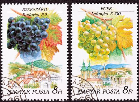 Canceled Hungarian Postage Stamp Celebrating famous grape growing and wine making regions