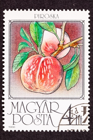 canceled: Canceled Hungarian Postage Stamp showing ripe peaches on a tree branch