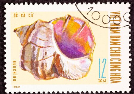 conch: North Vietnamese Postage Stamp Conch Shell Stock Photo