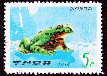 philatelic: Canceled North Korean Postage Stamp Oriental Black Firebelly Toad Stock Photo