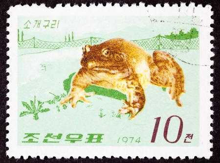 canceled: Canceled North Korean Postage Stamp North American Bull Frog.  Note the American frog comes with a fence...