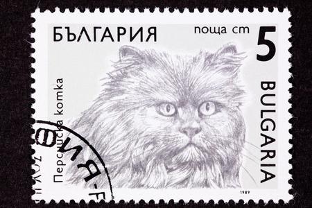 ブルガリアの猫の品種スタンプ シリーズ - ラフコリー ペルシャ