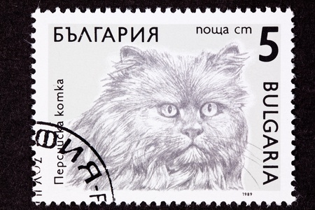 longhaired: Bulgarian cat breed stamp series -  Longhaired Persian