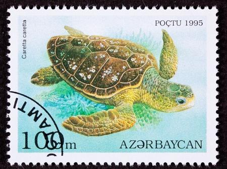 Canceled Azerbaijan Postage Stamp Swimming Loggerhead Sea Turtle, Caretta caretta