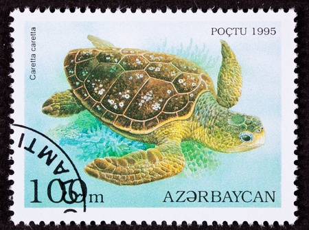 ocean view: Canceled Azerbaijan Postage Stamp Swimming Loggerhead Sea Turtle, Caretta caretta