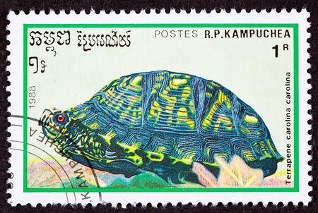 canceled: Canceled Cambodian Postage Stamp Eastern Box Turtle Terrapene Carolina Carolina
