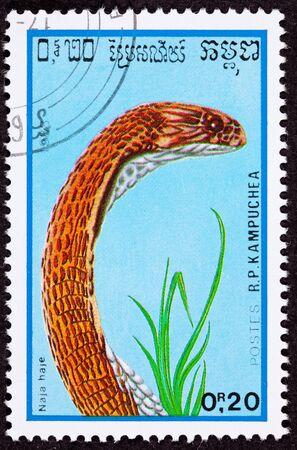 egyptian cobra: Annullato cambogiano francobollo rame colorato Naja haje, Naja Haje Archivio Fotografico