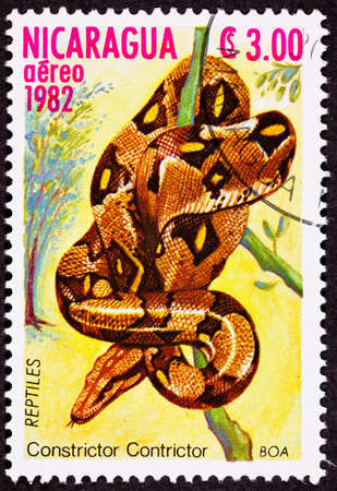 fullbody: Coiled red tailed Boa constrictor, subspecies Boa constrictor constrictor.  Note the spelling mistake on the stamp