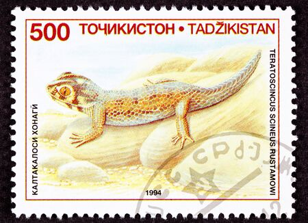 fullbody: Common Wonder Gecko, Lizard, Teratoscincus scincus.  Also known as the Frog-eyed Gecko.  Stamp says it is Teratoscincus scincus roborowskii which is not a recognized species though Teratoscincus roborowskii is.