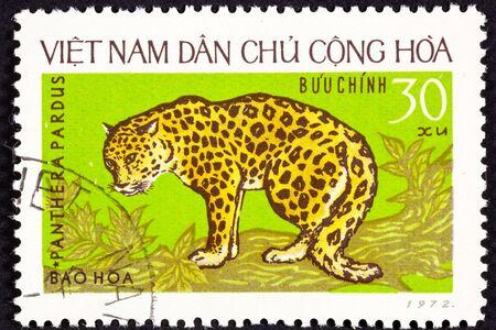 viet nam: Leopard, Panthera Pardus, on a tree branch.  North Vietnamese stamp. Stock Photo